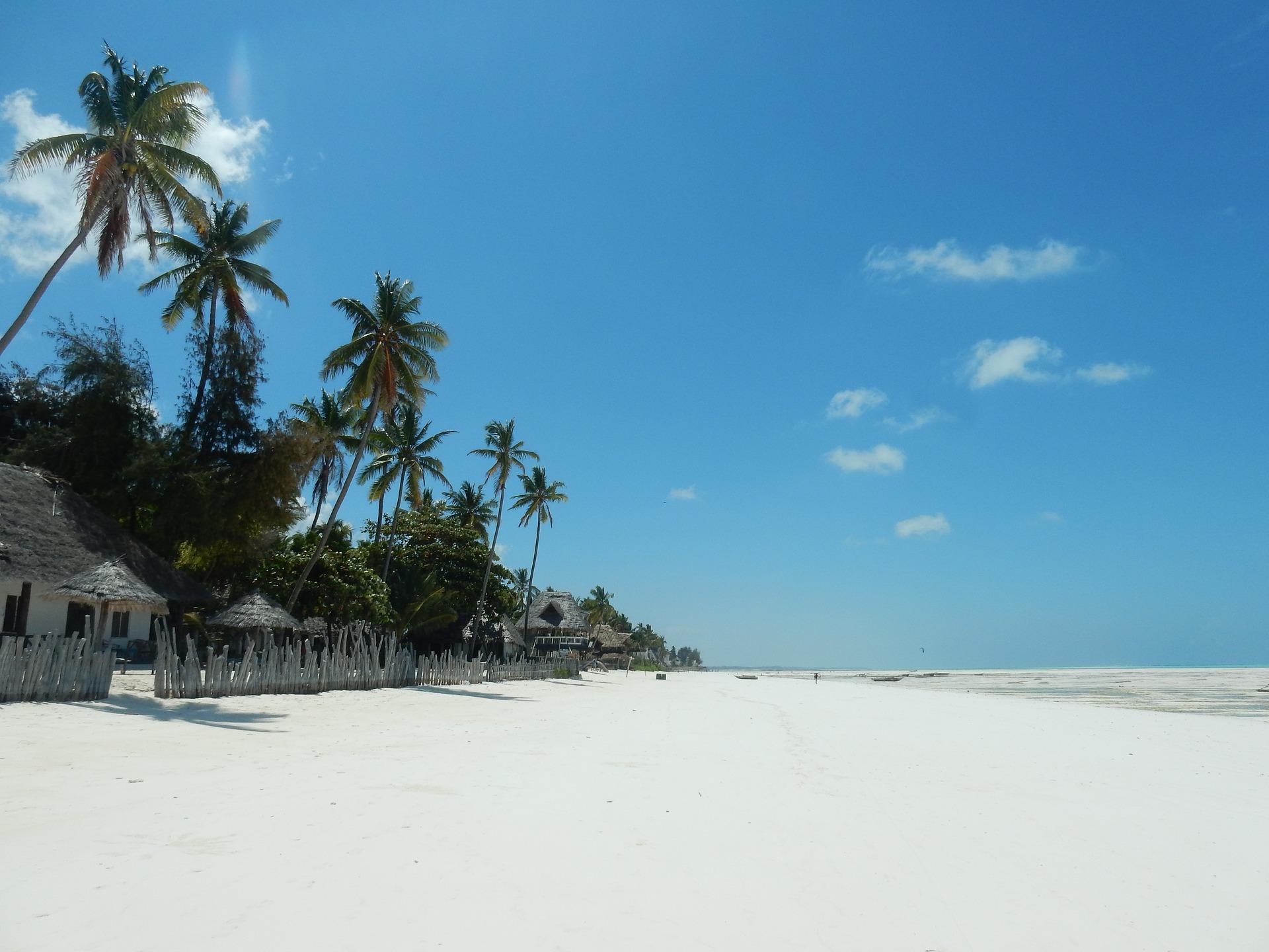 14 Days Wilderness Safari and Zanzibar Beach Holiday